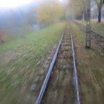 RT @estonia_eu: A dreamscape kind of foggy morning in #Tallinn today. View from tram nr 1, Kopli peninsula to Kadrioru Park. http://t.co/2zDk3g6b2c