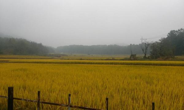 고즈넉한 가을풍경 http://t.co/znrUIzSxgW