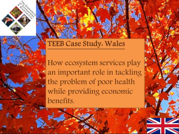 Check out this TEEB case study on how ecosystem services increase health #NaturalCapital http://t.co/aYOctb5L2i http://t.co/8ihjq8UuzQ