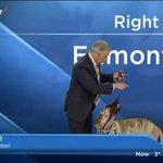 RT @g1: Cão rouba a cena em previsão do tempo de TV canadense http://t.co/7SY8yQBCua #G1PlanetaBizarro http://t.co/bd1nbhX9Wh