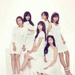 Apink、日本シングル『NoNoNo(Japanese ver.)』のプロモーションのため10月21日に日本へ。 http://t.co/63uJrmcZW9
