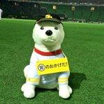 RT @HAWKS_official: 皆さん、熱い応援本当にありがとうございました! 日本シリーズも応援お願いします!#sbhawks http://t.co/QDNqzcvaMV