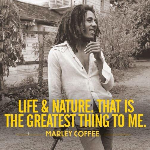 Life & Nature. That is the greatest things to me. @bobmarley @Romarley http://t.co/Sv5zvvLX04