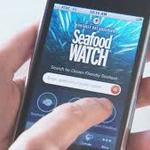 Worlds greenest #apps? @SeafoodWatch ranks No. 5! http://t.co/mizVeuU4qG @WSP_UK via @GreenBiz http://t.co/ErPQq8z4IE