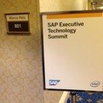 .@sfeldman0 & @puneetsuppal kick-off the Executive #Tech Summit at #SAPtd http://t.co/edMjWzt9PD