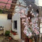 De los pocos rincones huertanos que quedan afortunadamente. Tarde preciosa de otoño en #Murcia http://t.co/lJE2y20TZp