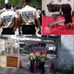 "RT @Reportero24: GUARENAS: Detenido PNB por robo de 42 armas de fuego http://t.co/GxY8S1JL86 grupo se identificó como ""colectivos"". http://t.co/6Z4gYExzQv"