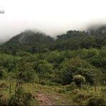 Bomberos rescatan a tres holandesas camino al volcán Barú. Más en http://t.co/em1Y997pIl #Panamá http://t.co/acKo6BJvKm