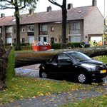 RT @RTLNieuwsnl: Ravage door #storm in Tilburg-West. Fotos: http://t.co/tOMLcqxdcp http://t.co/ZhbsKJffAB