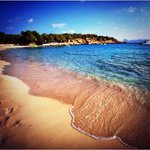 Golden sands and crystal clear water at Cala Bassa, Ibiza #ibiza #beach #calabassa #eivissa http://t.co/JmHTSrm0Hy