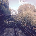 This is the tree blocking the line at Hampton Court and this doc has the London Bus routes http://t.co/vN86Nufw2A http://t.co/DsJOw3fnpZ