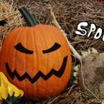 #Spooky, spirited adventures in #FrederickCounty to celebrate #Halloween http://t.co/fyyQgtgxXB #frederickmd http://t.co/73aXo1IFtf