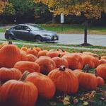 Pretty sure I can fit all these pumpkins in the @Lexus #LoyalISFsport ???? http://t.co/7ool0OLOe8