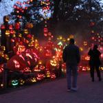 RT @ProjoPhoto: @RWPZoo Jack-O-Lantern Spectacular continues thru Nov. 2 @projo photos by Kathy Borchers http://t.co/qLWILdtErK http://t.co/QUacyKsSIu