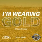 RT @mutigersdotcom: RT if youre wearing GOLD this Saturday! #TigerStripe - map @ http://t.co/Rhn5ggXpCl... #Mizzou http://t.co/RT0A0Uomwr
