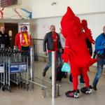 RT @thomascooksport: #MightyRed was at @LPL_Airport to greet the @LFC fans flying in from Oslo ahead of the @realmadrid clash! #LFC http://t.co/X5L0vyyuLI