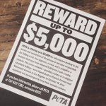 PETA offering $5,000 for 411 on possible religious ritualistic killing of cat & other animals in #LA. PLEASE RT! http://t.co/wrDTqwPsIZ