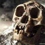 RT @24HorasTVN: Los hobbits y sus fósiles: el hallazgo que cambió la historia de la humanidad → http://t.co/rwGmxoHBne http://t.co/w6bKydeXRb
