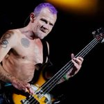 """RT @24HorasTVN: Flea y nuevo disco de Red Hot Chili Peppers: """"Será bailable, funky e introspectivo"""" → http://t.co/fxnEIn1EOx http://t.co/T9WmJuWuJ5"""