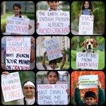 RT @SaifSpeakz: Happy Diwali .....#HappyDiwali ..... This time a eco friendly one ???? http://t.co/jhYp7JRzXL