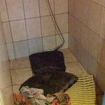 """RT @Tvnet_portals: Rīgas 2. ģimnāzijas 10. klašu """"fukšu"""" ballē jaunieši kārtīgi izdemolē viesnīcu! http://t.co/hWb6cZnvB0 http://t.co/0S2fWYhSHu"""