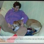 Enfermera española Teresa Romero supera el ébola http://t.co/UBHr5zGVfw http://t.co/zzRoNVGeP3