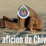 Burlas y más burlas... Las @Chivas se convirtieron en la comidilla de las redes sociales http://t.co/LV04M0zzuu http://t.co/eN0mhKQMz1