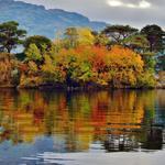 RT @tripplannermama: Loch Lomond Island - Autumn. #Scotland #Fall http://t.co/Msxl2ZsXwU http://t.co/Sc3jJS2u0e