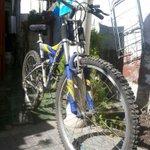 RT @Gabrielisiima: @DonDateador vendo bicicleta oxford aro 26, buen estado solo pintura deteriorada x uso $55 lucas RT xfa! http://t.co/KIG6GAwR4B