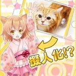 実際の猫をカメラで撮ると…擬人化される時代到来!『猫耳さばいばー!』は、にゃん娘を撫でるRPG http://t.co/9rbXBxU82m http://t.co/oUITgHGQ63