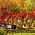 RT @adamanttur: Куда же поехать в ноябре: http://t.co/47Exa8KJmZ http://t.co/uLAZzp6zh0