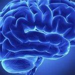 Para que lo tengas en cuenta: Los doce alimentos que potencian el funcionamiento del cerebro → http://t.co/tLHRiZFHZh http://t.co/IZnn7F3qAO