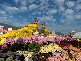 Festival Musim Gugur Korea yang Wajib Dikunjungi http://t.co/r579gtZkKP http://t.co/Nj1NFyeHrl
