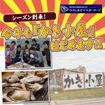 RT @hiroshima_pref: 【今年もかき小屋が続々オープン!】広島の冬の味覚と言えばかき!今年のかきは実入りがよくぷりっぷり。ぜひ熱々の焼きがきを食べてください!店舗情報⇒ http://t.co/8A3eYIKSpY #広島 #牡蠣 http://t.co/Ya1l2jszII