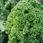 Would you like some kale with your Big Mac? McDonald's might be adding organic ingredients http://t.co/ofxtgU2dN6 http://t.co/T7DsGPWX1q