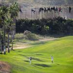 Foto de premio. Jugando al golf frente a inmigrantes encaramados en la valla de Melilla. http://t.co/3co1D0mbQs http://t.co/cDDKAVj1Yb