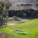 Clama al cielo. Foto de @eldiarioes Unos juegan al golf mientras otros se juegan la vida en la valla de Melilla. http://t.co/m5lbmevdr7