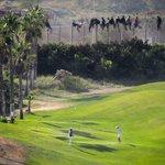 RT @ARA_fotografia: Brutal imatge. Immigrants desesperats al costat de jugadors de golf a Melilla @PRODEINORG http://t.co/OUi4cCl4os http://t.co/VTpbh4F496