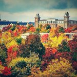RT @Arkansas_Logo: Fayetteville, Arkansas. USA Todays most beautiful town in the US for its size. It doesnt get much better than this. http://t.co/RA6JoOpwSf