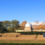 RT @Illinois_Alma: Harvest time at the #ILLINOIS Morrow Plots, the oldest experimental corn field in the Western Hemisphere. http://t.co/WI3eS0Rgdh