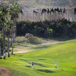 RT @diariARA: Immigrants desesperats i jugadors de golf. Llegeix la història darrere aquesta foto de Melilla http://t.co/pWjdMhPj7M http://t.co/tiQHXB5Zwh