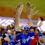 RT @HuffPostSports: Only in Kauffman Stadium could a fan be allowed to wear enormous moose antlers http://t.co/tKs6OsLzEW #WorldSeries http://t.co/OkhoUdvZlX