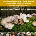 RT @Pamplonamegusta: Saborea el otoño con los mercados del Ensanche y Ermitagaña. Pincho + @vinonavarra 1€. 25/10 #Pamplona http://t.co/X5CZT7fGC9