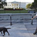 RT @starsandstripes: #BREAKING: Another man apprehended after jumping #WhiteHouse fence: http://t.co/HTry0xMETf http://t.co/8Kx283lgZh