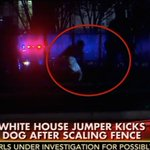 RT @theblaze: Another man jumps White House fence, body slams Secret Service K-9: http://t.co/X9waXXipDG http://t.co/3ZdPkBd5pU