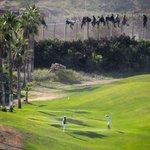 RT @jordibernabeu: Hosti, quina escena més forta: Salto de valla y partida de golf en Melilla (José Palazón – Prodein) http://t.co/d7k306WtAU