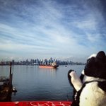#Vancouver That city, my city! (Photo: oneeyedwilliam) http://t.co/LdetAbcvT8