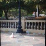 Las áreas verdes, pisos, barandas, servicio eléctrico y baños deteriorados en el Monumento de la Chinita. ¡Insólito! http://t.co/8L94BOJmqZ