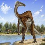 RT @Estadao: Dinossauro desengonçado foi ancestral do avestruz, descobrem cientistas http://t.co/OaDQbafwg1 http://t.co/PGaNHwFiqQ