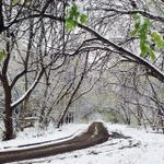 Доброе утро, друзья! Сегодня будет снежно и холодно! Одевайтесь теплее! http://t.co/pFwYiZyzIG #ekb #itsmycity http://t.co/JsPSyUsDHL